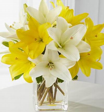 Philippinesflowers Lilies for Philippines